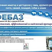 Фебаз (Фенбендазола-22.2%) антигельминтик 500гр, (аналог-Панакура) фото