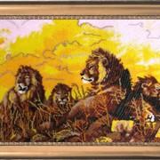Наборы для вышивания бисером Львы фото