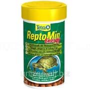 Корм для водных черепах энергетический Tetra REPTOMIN Energy 250ml фото
