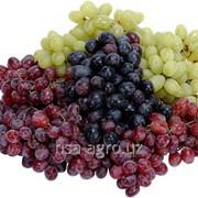 Минеральное удобрение для винограда Атланте Плюс фото