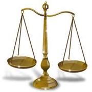 Представительство интересов в судах и госорганах фото