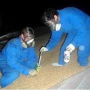Фумигация зерна в вагонах в складских помещениях фото