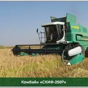 Самоходный зерноуборочный комбайн СКИФ-250Р фото