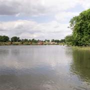 Озеро, став фото