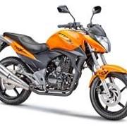 Мотоцикл LIFAN LF150-10B фото