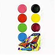 """Краска 114320 Алингар AL 6805 """"Бабочка"""" акварель( 12 цв.) карамельная, без кисти, пластиковый box ( цена за 1 шт.) фото"""