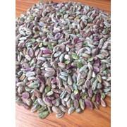 Pistachio kernel фото