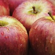 Яблоки осенние фото