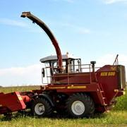 КСК-600 кормоуборочный комбайн, Комбайны зерноуборочные, Комбайны, Комбайн фото
