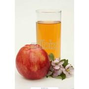 Сок яблочный натуральный фотография