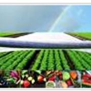 Продажа агроволокна по всей Украине фото