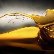 Машины и оборудование для производства масла,Маслобойка фото