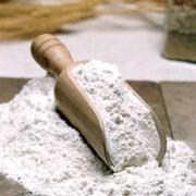 Мука экструзионная (манная, гречневая, овсяная, рисовая, пшеничная, кукурузная, ячменная) согласно ТУ У 00883403.002-99 фото