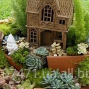 Мініатюрний сад фото