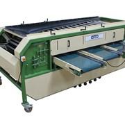оборудование машина для сортировки овощей, лука фото