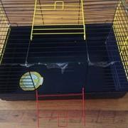 Клетка для кроликов и морских свинок 70 см фото