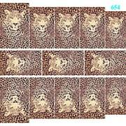 "Dona Jerdona слайдер дизайн ""Дикие кошки"" 654 фото"