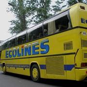 Автобус Москва - Киев - Москва фото