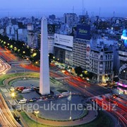 Авиаперевозка грузовая международная в Аргентину фото