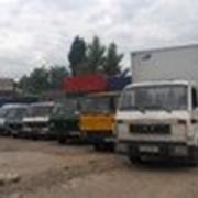 Аренда спецтехники в Алматы фото