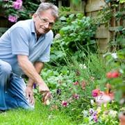 Садовник, хозяйственник фото