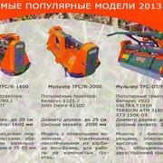 Мульчер FERRI TFC-DT/R 2000 (с подвижными молотками) фото