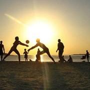 Аренда спортивных площадок для бадминтона, волейбола, футбольное поле фото
