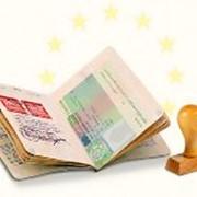 Бизнес виза срочно фото