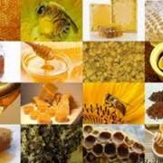 Мед и пыльца самовывоз фото
