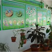 Кабинет Биологии фото
