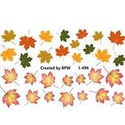 BPW.Style, Слайдер-дизайн «Кленовые листья» №1-496 фото