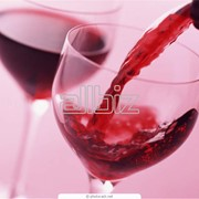 Экспертиза коньяков, экспертиза вин, экспертиза бренди фото