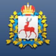 Геопортал Нижегородской области фото