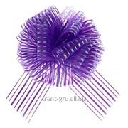 Бант-шар №10 Полоски , цвет фиолетовый фото