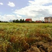Продажа земельного участка под Киевом фото