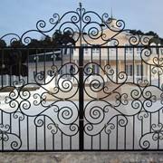 Ворота Кованная эвольвента фото