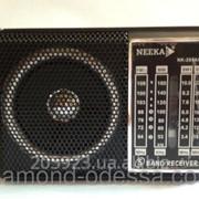 Радиоприемник NK-204AC NEEKA фото