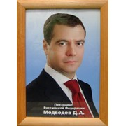 Портрет Дмитрия Медведева фото