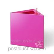 Умный вазон Triangle Flower Lover 21x21x21 глянецевый PLASTKON Розовый фото