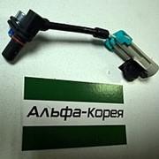 Датчик ABS передний левый=правый Winstorm / Captiva // Delphi фото
