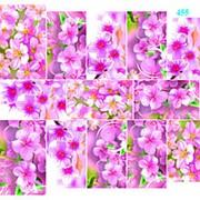 "Dona Jerdona слайдер дизайн ""Цветы"" 455 фото"