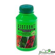 Удобрение Азотовит для комнатных растений 0,22л фото