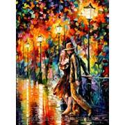 Картина по номерам Прогулка под фонарями фото