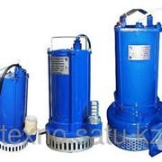 НАСОС для загрязнненых вод ГНОМ 6-10 220В фото