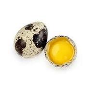 Яйцо перепелиное пищевые «Агротрон» фото