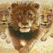 Wild lions in the savannah фото