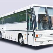 Автобус МАЗ - 152, Автобусы фото