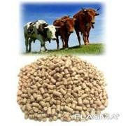 Комбикорм Гранулированный для откорма крупного рогатого скота фото