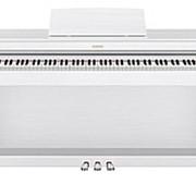 Цифровое пианино Casio AP-470WE фото