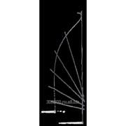 Шпалера Парус 2м фото